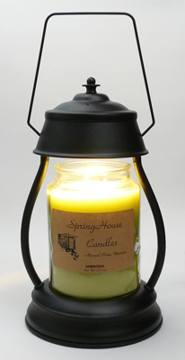 Candle Lamp Halogen Bulb